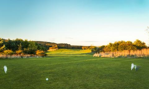 14th tee - get over the brow of the hill and the fairway runs down giving you a good view of the green